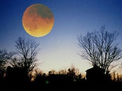 Rare astronomical phenomenon known as Moon Illusion to occur in Russia this week