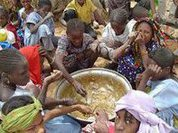 Global food crisis affects over 44 million people