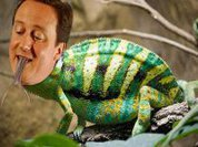 Open letter to David Cameron