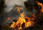 Natural disasters exhaust Russian economy