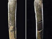Primeval humans practiced cult of phallus 28,000 years ago