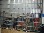 Time to end the current prison system