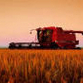 Russian Agriculture Census to be Held Soon
