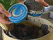 Deadly caviar no longer a threat