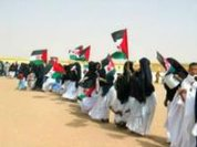 Decolonization of Western Sahara, the world's debt to the Saharawi people