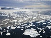 New study confirms rapid melting of the Arctic