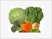 Vegetative Cures for Cancer