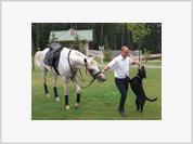 Putin and the animals