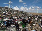 Waste not, want not: 6 billion USD in food is wasted every day