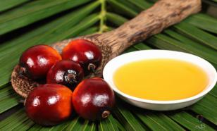 Russia reduces imports of palm oil