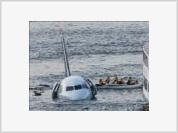 Bird Terrorists Knock Down US Plane
