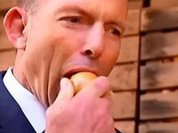 Raw onions for Australian Prime Minister Tony Abbott