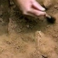 Aryan burial found in Russian city of Omsk