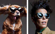 Toothless Toast stars in luxury eyewear campaign