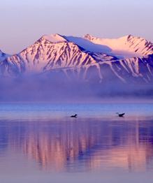 Pristine beauty of Russia's Altai