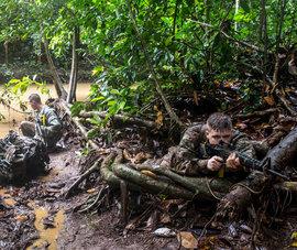 армия США, 25-я пехотная дивизия, военные учения
