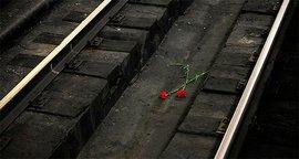В Москве селфи в небезопасном месте вновь убило школьницу