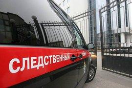Глав МВД и СК РФ попросили взять под контроль расследование нападения на активиста МГЕР