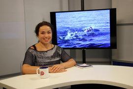 Покорительница Ла-Манша Людмила Попова, побывала в гостях у Pravda. Ru и рассказала о своих заплывах и закалке характера