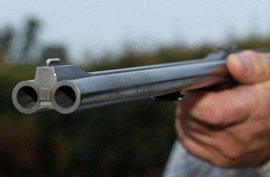 В Подмосковье сотрудники ДПС застрелили преступника с обрезом