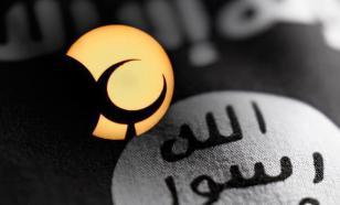 Ali Macron va-t-il distribuer postes et circonscriptions aux islamistes?