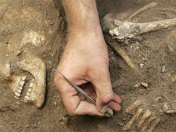 Археологи из Норвегии обнаружили захоронение викинга