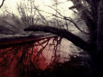 Когда небо плачет кровью