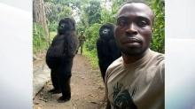 Две гориллы позируют для селфи в парке в ДР Конго