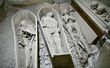В Ирландии преступник украл голову мумии
