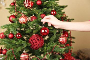 Правильный выбор елки на Новый Год