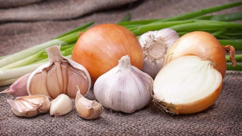 Стоматолог рассказал, какие продукты вызывают неприятный запах изо рта