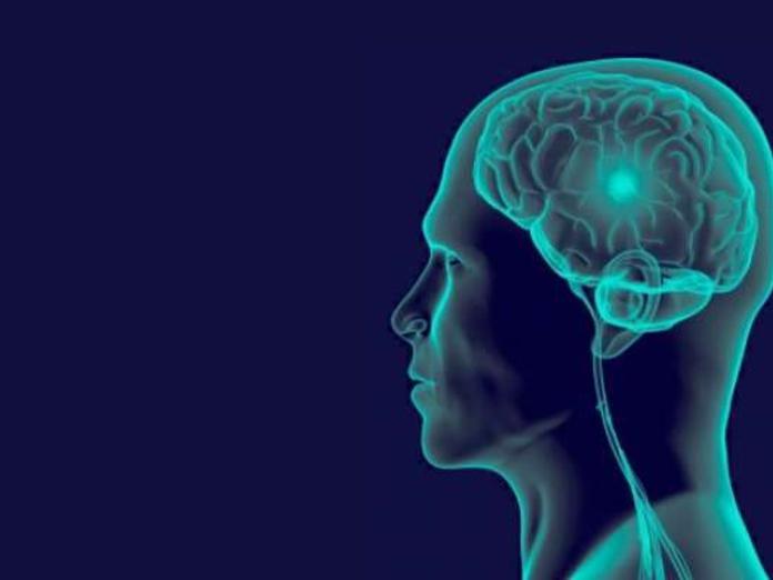 Как работает память?