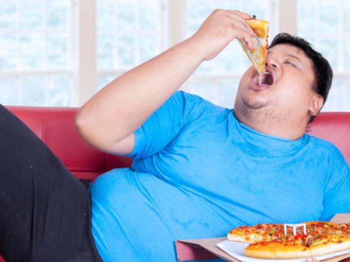 В Китае выяснили причины, по которым люди толстеют