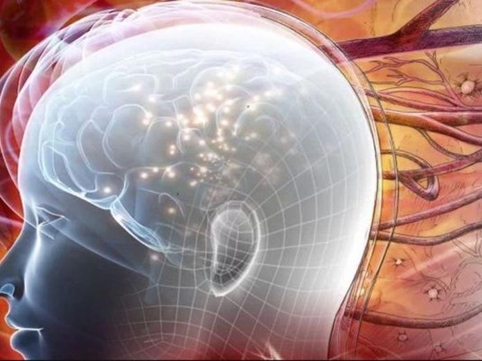 Специалисты создали таблетки для восстановления нейронов головного мозга