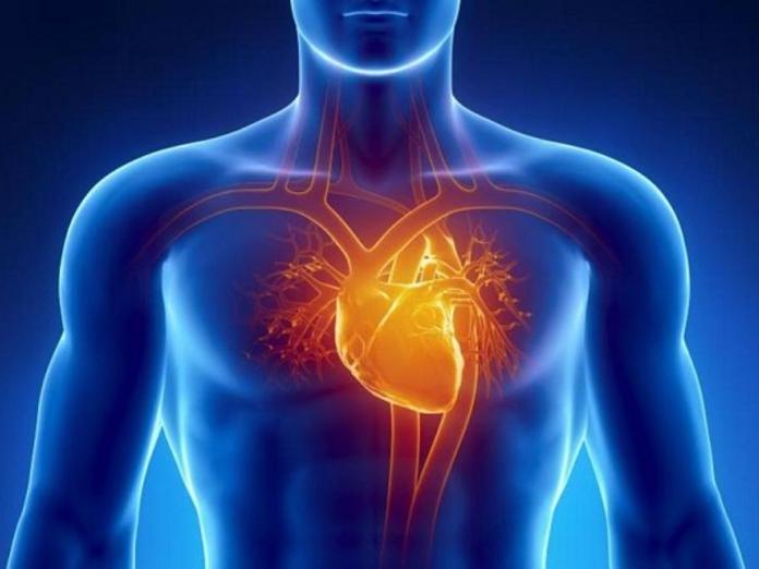 Открытия, положившие конец сердечным приступам. Часть 5