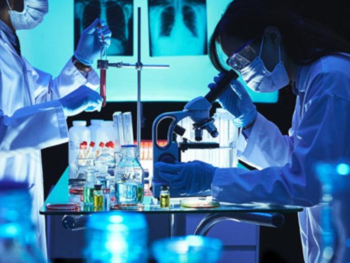 Биологи превратили клетки кожи в иммунные