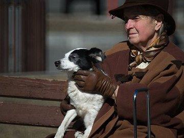 Выгул собак как одна из причин травматизма у пожилых людей