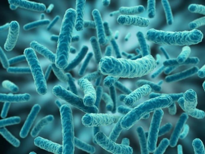 Четыре инфекции, передающиеся половым путем, о существовании которых вы не знали