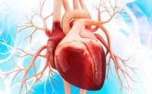 Открытия, положившие конец сердечным приступам. Часть 3