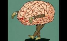 Почему наш мозг всегда находит проблемы?
