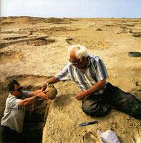 В основе Дня археолога то ли Буцефал, то ли проверка