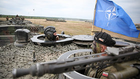 """Telepolis: Под захватом НАТО """"Фротерры"""" подразумевается Россия"""