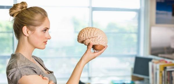 Книги помогают улучшить работу мозга