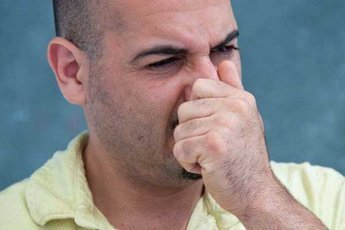 У лживых людей холодный нос и горячий лоб