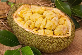 Что такое джекфрут и чем он полезен