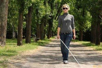 Ученые знают, как вернуть зрение ослепшим