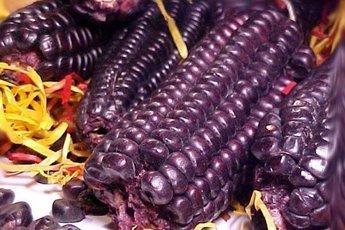 Фиолетовая кукуруза полезна для диабетиков