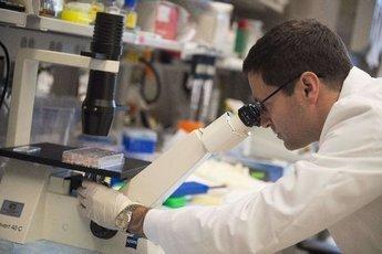 В Волгограде ученые тестируют новое средство против тромбов
