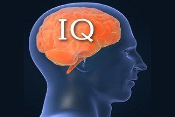 Основные черты людей с высоким интеллектом