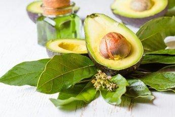 Авокадо и его польза для организма